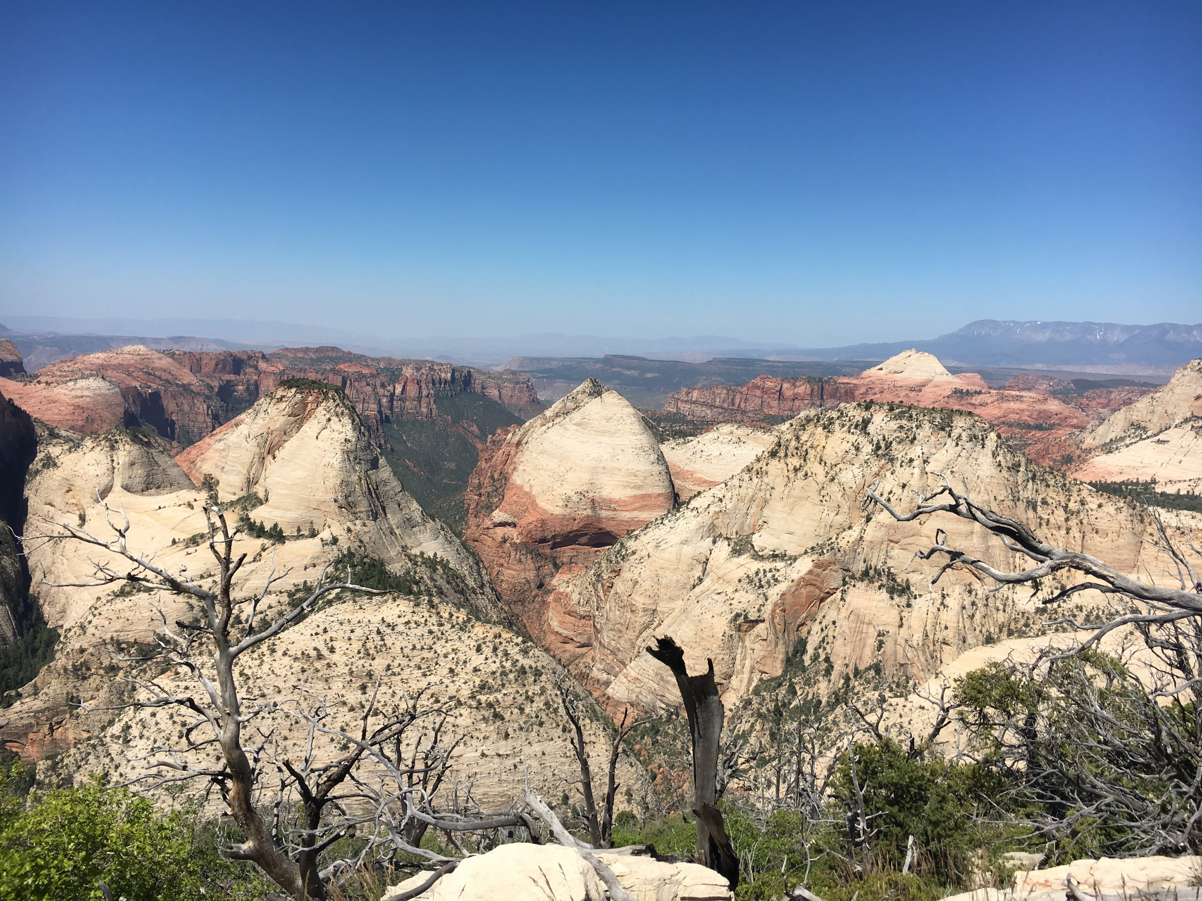 A view from the west rim in Zion